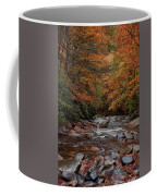 Little Pigeon River In Autumn Coffee Mug