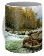 Little Pigeon River In The Greenbrier Section Of Smoky Mountains Coffee Mug