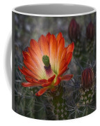 Little Red Claret Cup Flower  Coffee Mug