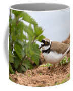 Little Ringed Plover Coffee Mug