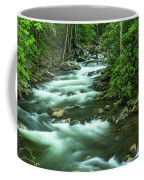 Little River Tremont Area Of Smoky Mountains National Park Coffee Mug
