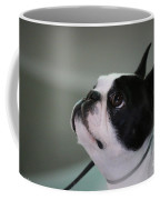 Little Show Off Coffee Mug