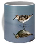 Little Stint  Coffee Mug