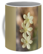 Little White Wildflowers  Coffee Mug