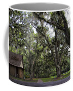 Live Oak And Spanis Moss Landscape Coffee Mug