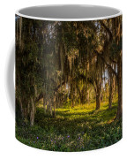 Live Oak Tree Coffee Mug