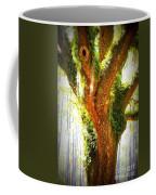 Live Oak With Cypress Beyond Coffee Mug