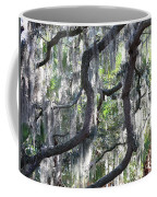 Live Oak With Spanish Moss And Palms Coffee Mug