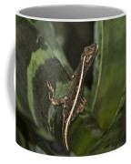 Lizard 2 Coffee Mug