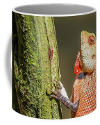 Lizard In Maldive Coffee Mug