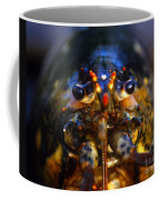 Lobster Coffee Mug