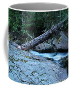 Log Over Deep Creek Coffee Mug