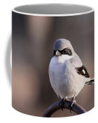 Loggerhead Shrike - Smokey Coffee Mug