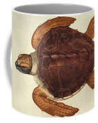 Loggerhead Turtle, 1585 Coffee Mug