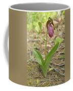 Lone Lady Slipper Coffee Mug