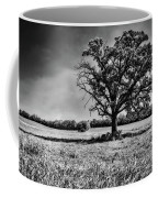 Lone Oak Tree In Black And White Coffee Mug