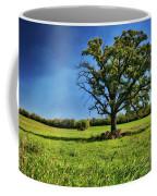 Lone Oak Tree In Wisconsin Field Coffee Mug