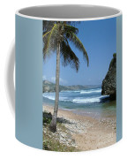 Lone Palm On Barbados Coast Coffee Mug