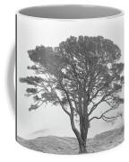 Lone Scots Pine, Crannoch Woods Coffee Mug