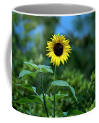 Lone Sunflower  Coffee Mug