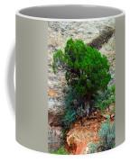 Lone Tree On A Cliff Coffee Mug