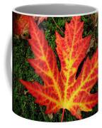 Lonely Leaf ... Coffee Mug