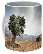 Lonely Olive Tree And Stormy Cloudy Sky Coffee Mug