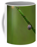 Lonely Snail -florida Coffee Mug