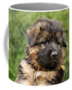 Long Coated Puppy Coffee Mug