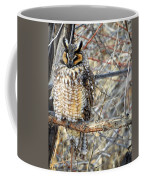 Long Eared Owl Resting Coffee Mug