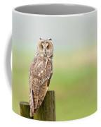 Long Eared Owl Coffee Mug
