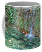 Long Exposure Waterfall Coffee Mug