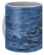 Long-finned Pilot Whales Coffee Mug