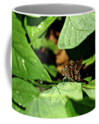 Long Tail Skipper Butterfly 1 Coffee Mug