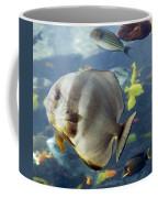 Longfin Batfish Coffee Mug