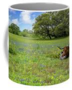 Longhorn Spring Coffee Mug