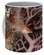 Longnose Hawkfish Hiding In Coral Coffee Mug by James Forte
