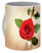 Look Down On A Rose Coffee Mug