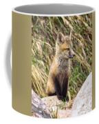 Look-out Coffee Mug