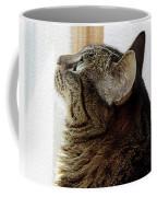 Look Out Window Tabby Cat Coffee Mug