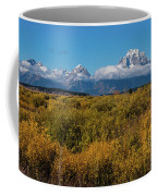 Looking Across Willow Flats To Mt Moran Coffee Mug