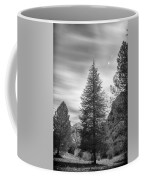 Looking For The Sky Into The Woods Coffee Mug