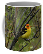 Looking At You - Western Tanager Coffee Mug