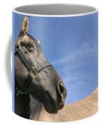 Looking Behind Coffee Mug