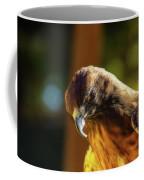 Looking Down On You Coffee Mug