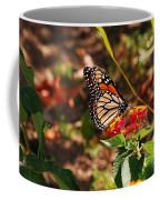 Looking For Nectar Coffee Mug