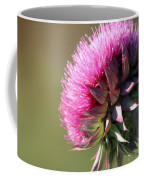 Looking For Sun Coffee Mug