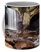 Looking Glass Falls Coffee Mug