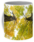 Looking Up At Fall Coffee Mug