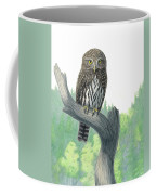 Lookout- Northern Pygmy-owl Coffee Mug